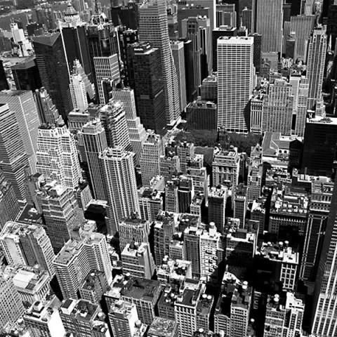Concrete Jungle New York City