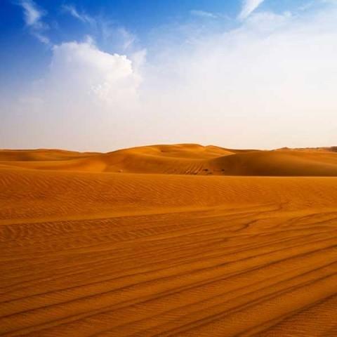 UAE, Dubai Desert