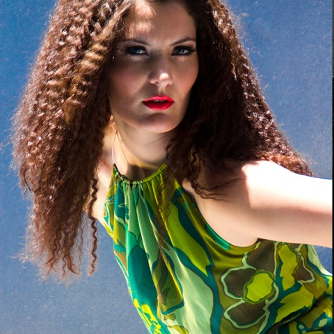 Alicia Hollen Summer 2011-2012