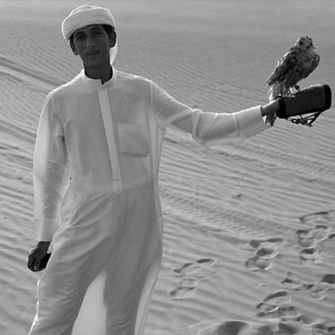 UAE, Dubai falconer